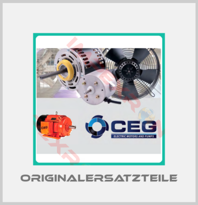 CEG Electric Motors